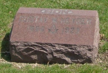 HEYSER, GUSTAV W. - Cook County, Illinois   GUSTAV W. HEYSER - Illinois Gravestone Photos