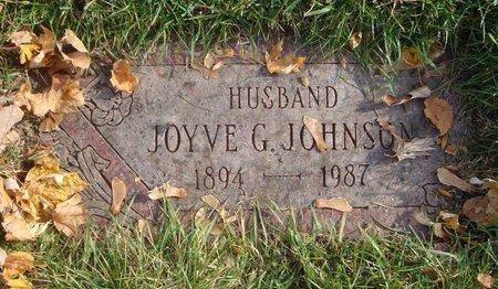 JOHNSON, JOYVE G. - Cook County, Illinois   JOYVE G. JOHNSON - Illinois Gravestone Photos