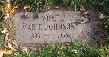 JOHNSON, MARIE - Cook County, Illinois | MARIE JOHNSON - Illinois Gravestone Photos