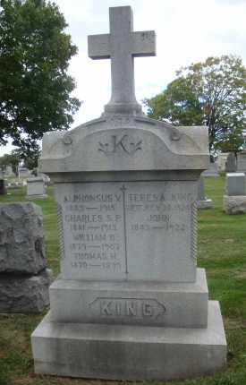 KING, JOHN - Cook County, Illinois | JOHN KING - Illinois Gravestone Photos