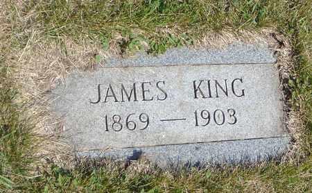 KING, JAMES - Cook County, Illinois | JAMES KING - Illinois Gravestone Photos