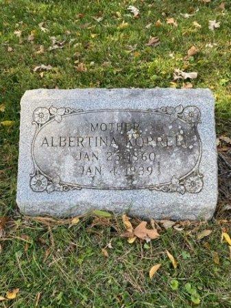 KURRASCH KORRELL, ALBERTINA - Cook County, Illinois   ALBERTINA KURRASCH KORRELL - Illinois Gravestone Photos