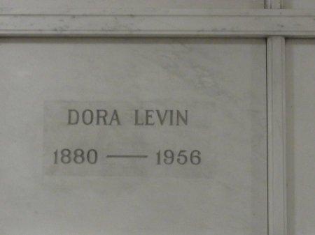 BROWNSTEIN LEVIN, DORA - Cook County, Illinois | DORA BROWNSTEIN LEVIN - Illinois Gravestone Photos