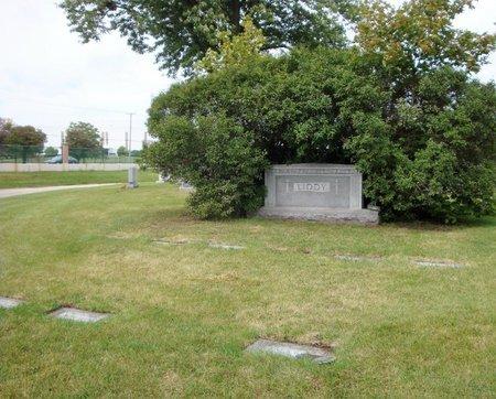 JOHNSON, PATRICIA C. - Cook County, Illinois | PATRICIA C. JOHNSON - Illinois Gravestone Photos