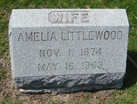 LITTLEWOOD, AMELIA - Cook County, Illinois   AMELIA LITTLEWOOD - Illinois Gravestone Photos