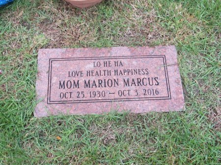 BROWNSTEIN MARCUS, MARION FAY - Cook County, Illinois | MARION FAY BROWNSTEIN MARCUS - Illinois Gravestone Photos