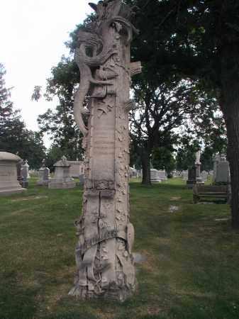WILLIAMS, JENNIE - Cook County, Illinois | JENNIE WILLIAMS - Illinois Gravestone Photos