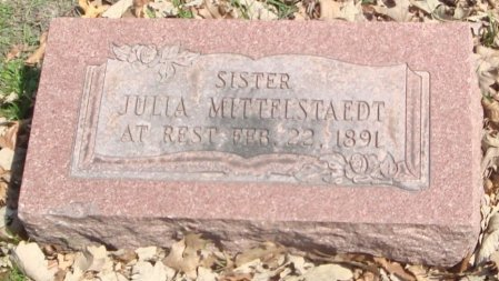 MITTELSTAEDT, JULIA - Cook County, Illinois | JULIA MITTELSTAEDT - Illinois Gravestone Photos