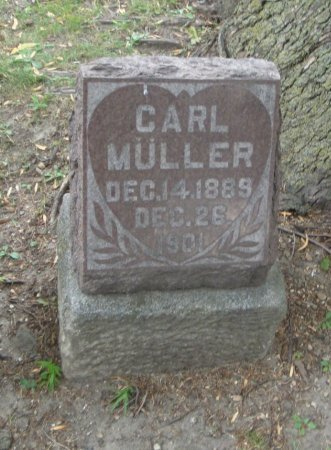 MüLLER, CARL - Cook County, Illinois   CARL MüLLER - Illinois Gravestone Photos