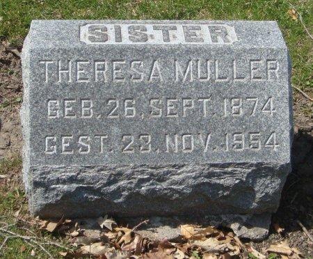 MULLER, THERESA - Cook County, Illinois | THERESA MULLER - Illinois Gravestone Photos
