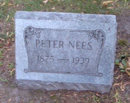 NEES, PETER - Cook County, Illinois | PETER NEES - Illinois Gravestone Photos