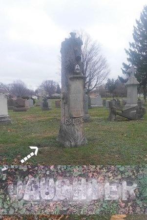 PRUNTY, MARY ANN - Cook County, Illinois   MARY ANN PRUNTY - Illinois Gravestone Photos