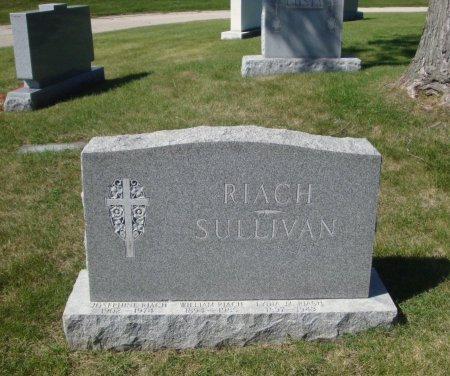 SULLIVAN, REDMUND B. - Cook County, Illinois | REDMUND B. SULLIVAN - Illinois Gravestone Photos