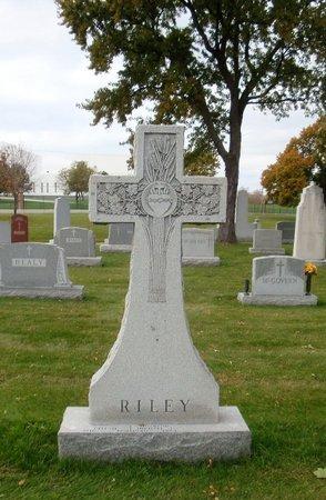 RILEY, MARK D. - Cook County, Illinois | MARK D. RILEY - Illinois Gravestone Photos