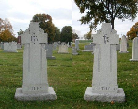 RILEY, DAVE L. - Cook County, Illinois | DAVE L. RILEY - Illinois Gravestone Photos