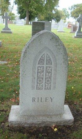 RILEY, WILLIAM J. - Cook County, Illinois | WILLIAM J. RILEY - Illinois Gravestone Photos