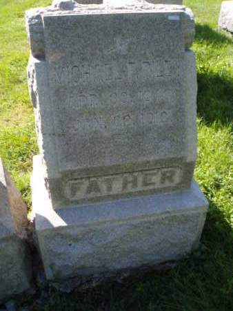 RILEY, MICHAEL F. - Cook County, Illinois | MICHAEL F. RILEY - Illinois Gravestone Photos