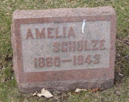 SCHULZE, AMELIA - Cook County, Illinois   AMELIA SCHULZE - Illinois Gravestone Photos