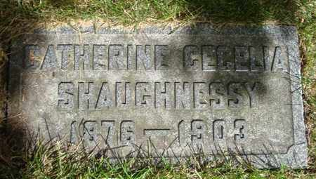 SHAUGHNESSY, CATHERINE CECELIA - Cook County, Illinois | CATHERINE CECELIA SHAUGHNESSY - Illinois Gravestone Photos