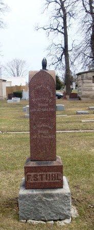 STUHL, WILHELMINA - Cook County, Illinois | WILHELMINA STUHL - Illinois Gravestone Photos