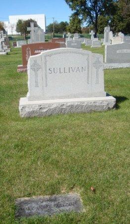 SULLIVAN, MARY - Cook County, Illinois | MARY SULLIVAN - Illinois Gravestone Photos