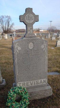 TREVISAN, ELISA - Cook County, Illinois | ELISA TREVISAN - Illinois Gravestone Photos