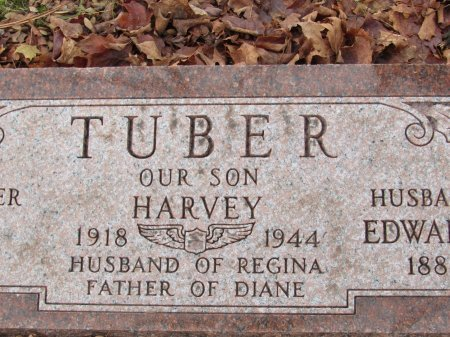 TUBER, DIANE - Cook County, Illinois | DIANE TUBER - Illinois Gravestone Photos