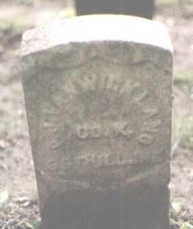 VANWICKLAND, P. J. - Cook County, Illinois | P. J. VANWICKLAND - Illinois Gravestone Photos