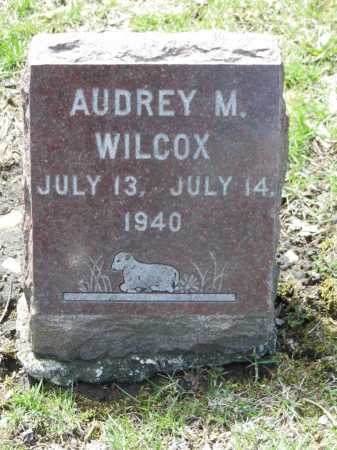 WILCOX, AUDREY M - Cook County, Illinois | AUDREY M WILCOX - Illinois Gravestone Photos