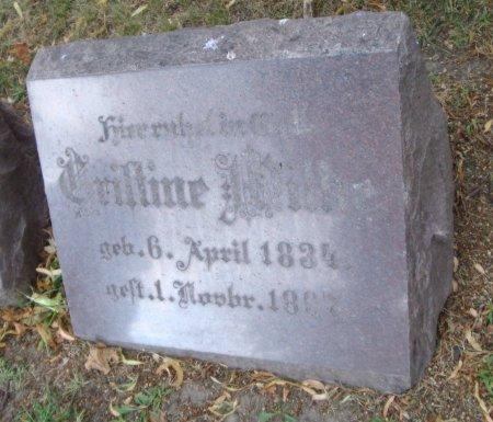 WILKE, CHRISTINE - Cook County, Illinois   CHRISTINE WILKE - Illinois Gravestone Photos