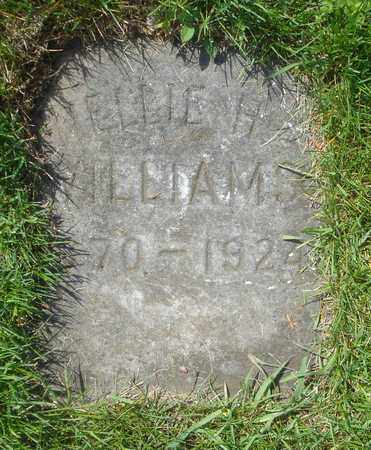 WILLIAMS, NELLIE H. - Cook County, Illinois | NELLIE H. WILLIAMS - Illinois Gravestone Photos