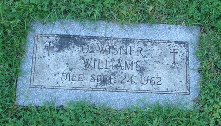 WILLIAMS, O. WISNER - Cook County, Illinois | O. WISNER WILLIAMS - Illinois Gravestone Photos