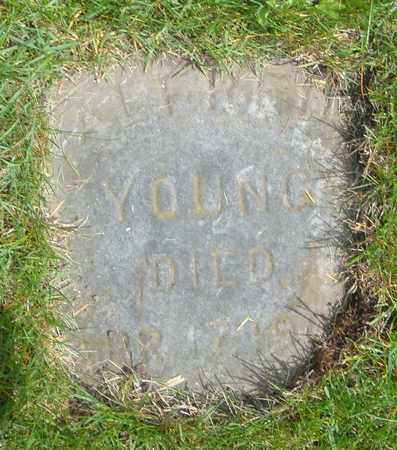 YOUNG, ALFRED - Cook County, Illinois | ALFRED YOUNG - Illinois Gravestone Photos