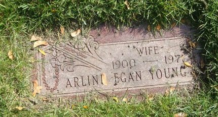 YOUNG, ARLINE - Cook County, Illinois | ARLINE YOUNG - Illinois Gravestone Photos