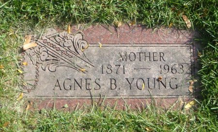 YOUNG, AGNES B. - Cook County, Illinois | AGNES B. YOUNG - Illinois Gravestone Photos