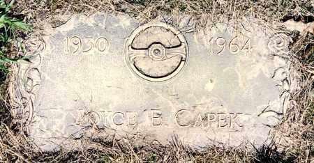 CAPEK, JOYCE ELAINE - Cook County, Illinois   JOYCE ELAINE CAPEK - Illinois Gravestone Photos
