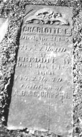 CRIPPEN, CHARLOTTE E. - DeKalb County, Illinois   CHARLOTTE E. CRIPPEN - Illinois Gravestone Photos
