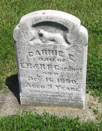 GARDNOT, CARRIE E - DeKalb County, Illinois | CARRIE E GARDNOT - Illinois Gravestone Photos