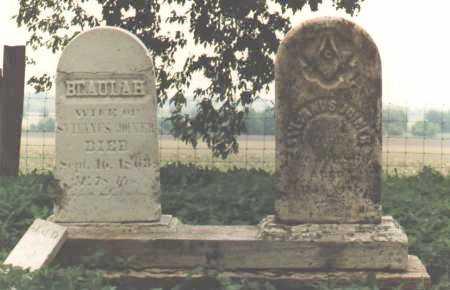 JOINER, SYLVANUS - DeKalb County, Illinois | SYLVANUS JOINER - Illinois Gravestone Photos