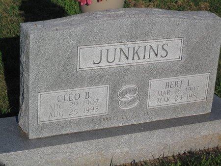 JUNKINS, BERT L. - Douglas County, Illinois | BERT L. JUNKINS - Illinois Gravestone Photos