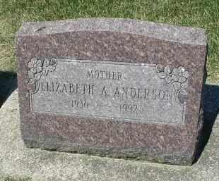 ANDERSON, ELIZABETH A. - DuPage County, Illinois | ELIZABETH A. ANDERSON - Illinois Gravestone Photos