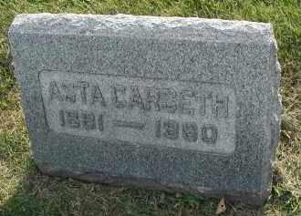 CARSETH, ASTA - DuPage County, Illinois | ASTA CARSETH - Illinois Gravestone Photos