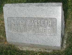 CARSETH, DAGNY - DuPage County, Illinois | DAGNY CARSETH - Illinois Gravestone Photos