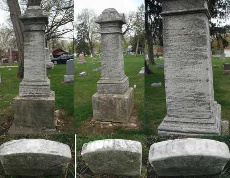 HAHN, BARBARA - DuPage County, Illinois | BARBARA HAHN - Illinois Gravestone Photos