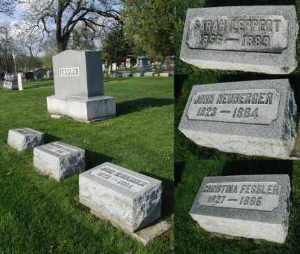 NEUBERGER, JOHN - DuPage County, Illinois | JOHN NEUBERGER - Illinois Gravestone Photos