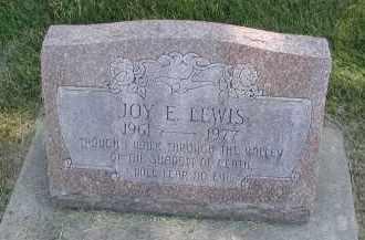 LEWIS, JOY E. - DuPage County, Illinois   JOY E. LEWIS - Illinois Gravestone Photos