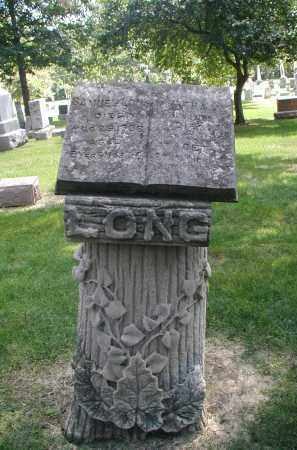 LONG, MARTHA A. - DuPage County, Illinois | MARTHA A. LONG - Illinois Gravestone Photos