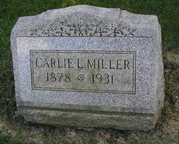MILLER, CARRIE L. - DuPage County, Illinois | CARRIE L. MILLER - Illinois Gravestone Photos
