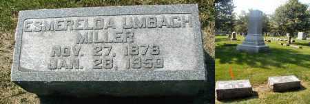 MILLER, ESMERELDA - DuPage County, Illinois   ESMERELDA MILLER - Illinois Gravestone Photos