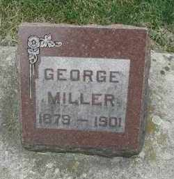 MILLER, GEORGE - DuPage County, Illinois | GEORGE MILLER - Illinois Gravestone Photos